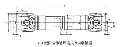 BH型标准伸缩焊接式万向betway88必威app